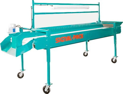 Roller inspection table IS 3600 (3900)